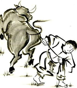 toro-infuriato-disegno