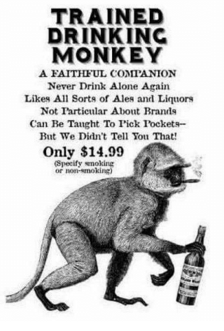 trained-drink-monkey
