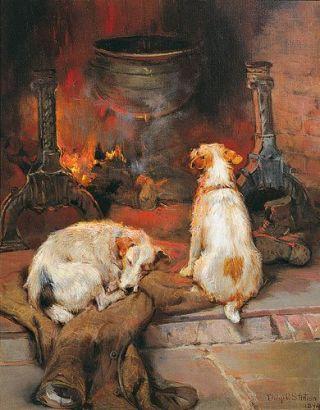 cani-focolare