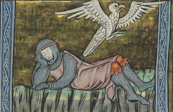 cavaliere-aquila-codex