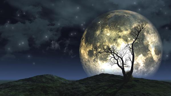 chiaro-di-luna