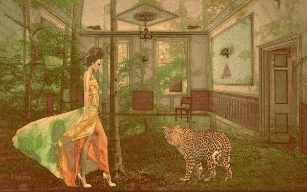 Hakan-donna-giaguaro