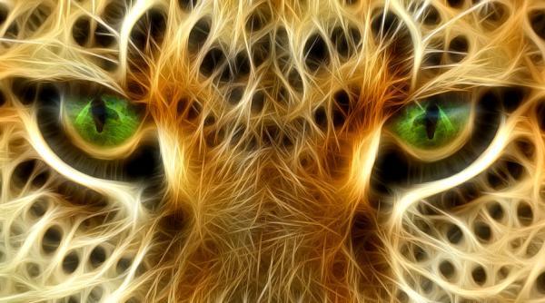 occhi-giaguaro