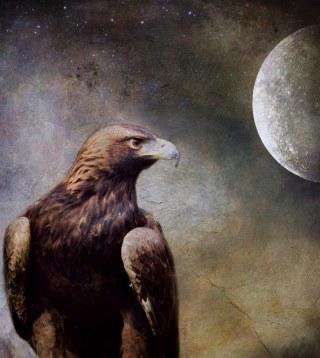 aquila-luna