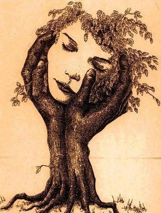 donna-quercia