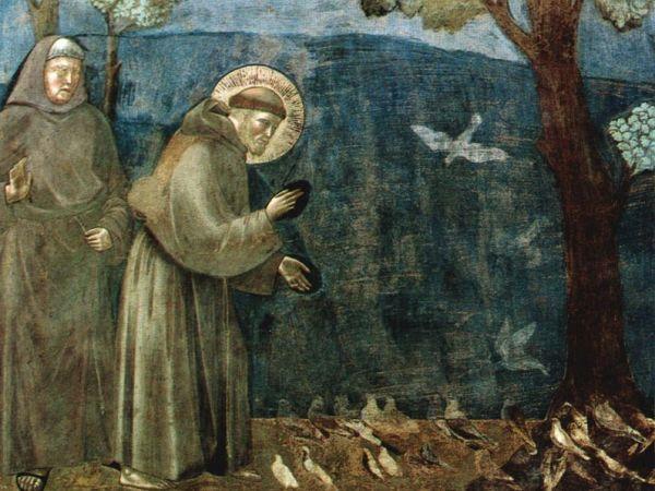 Giotto-Francesco-uccelli