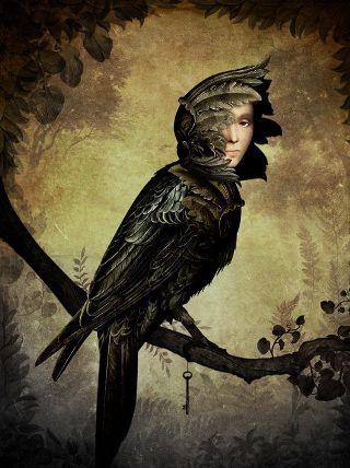 Schloe-uomo-avvoltoio