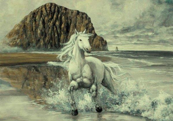cavallo-mare-stallone