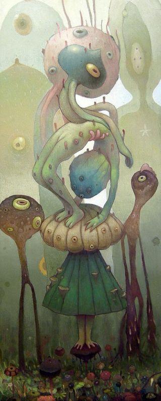 fungo-rana-femmina