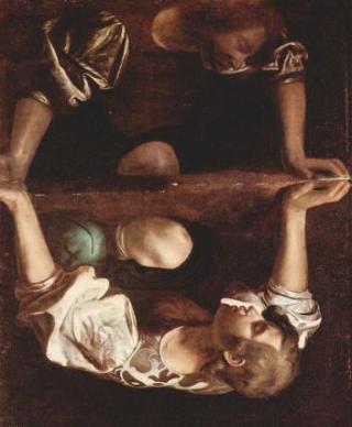 Galletti-immagine-ribaltata