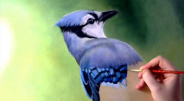 ghiandaia-azzurra-dipinta