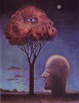 Kirkland-occhio-albero
