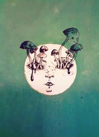 luna-funghi