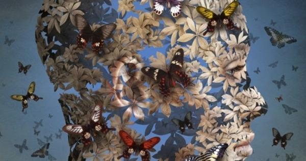 Morski-farfalle