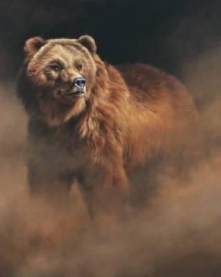 Aldrich-orso