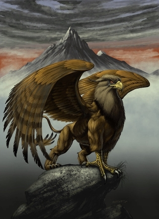 aquila-digital