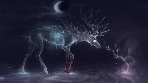 cervo-ferito