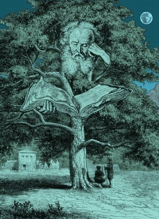 Harter-albero-poeta