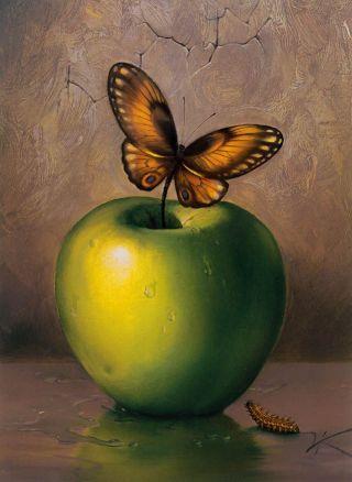 Kush-mela-farfalla