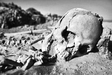 ossa-deserto