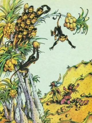 Sindbad-scimmie-noci