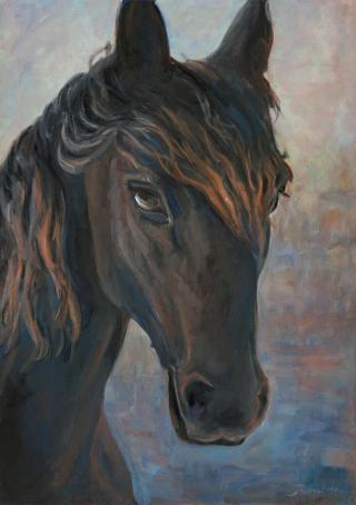 Busoni-cavallo-nero