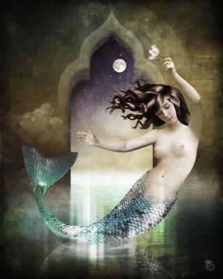Schloe-sirena-miraggio
