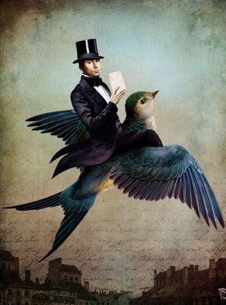 Schloe-uomo-piccione