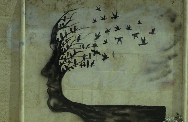 albero-volto-memoria