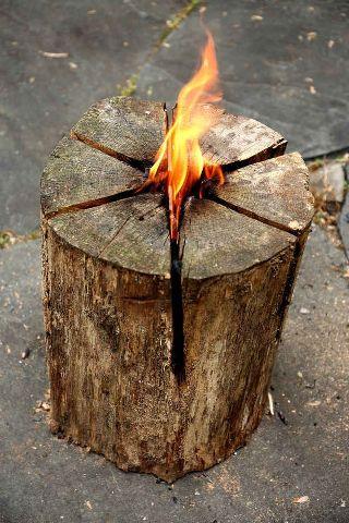 fuoco-tronco