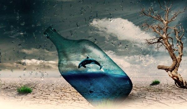 pesce-in-bottiglia