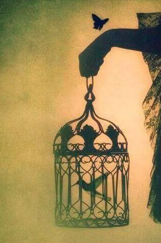uccello-gabbia