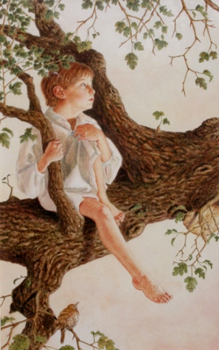 mills-ragazzo-su-albero
