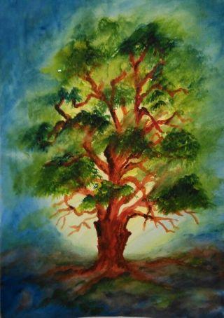 quercia-paint