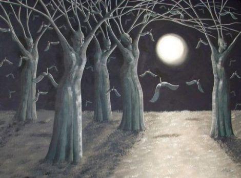 roberts-alberi-notte