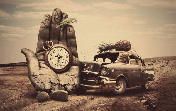 tempo-animale