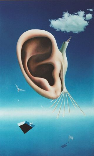 orecchio-bizzarro