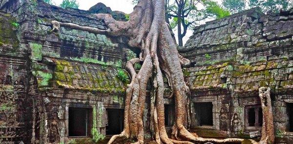 rovine-tempio-buddhista