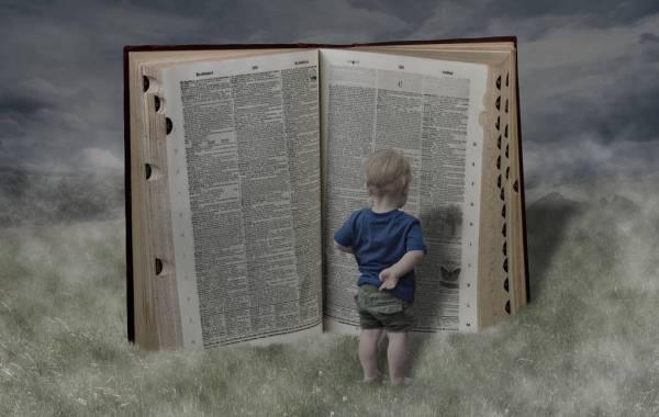 Barroa-libro-bambino