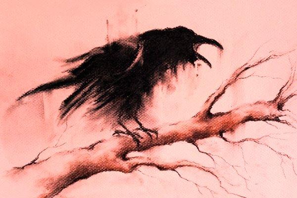 corvo-parlante