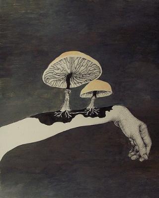 funghi-braccio
