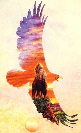aquila-nativi-americani