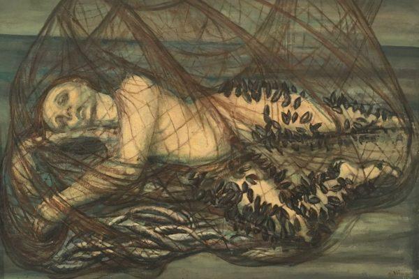 Nimr-donna-nella-rete