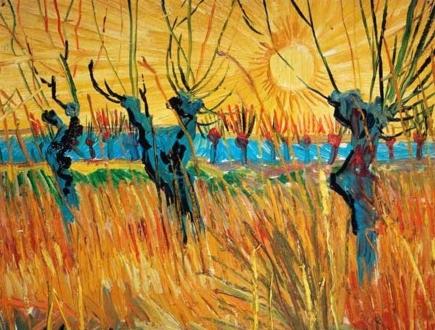 Van Gogh-salici-min