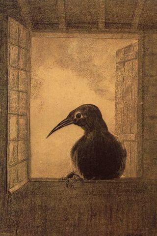 Redon-corvo