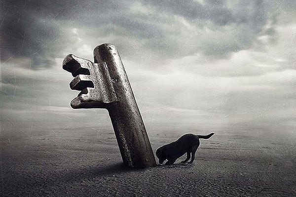 Ban-cane-chiave