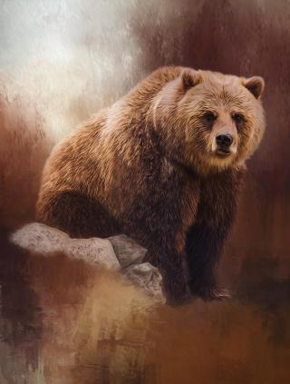 Blackstone-orso
