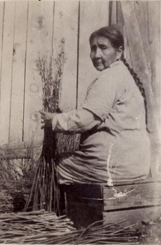 Chinook-donna