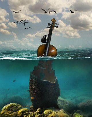 violino-uccelli