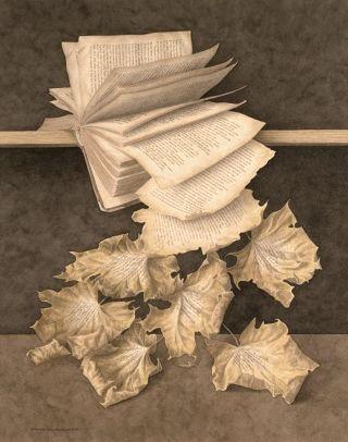 Wolstenholme-libro-foglie